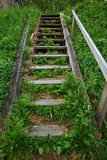 old wooden staircase in the green