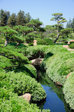 Beautiful view of Japanese Garden