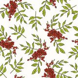 Rowan Seamless Pattern. Collection of berries.