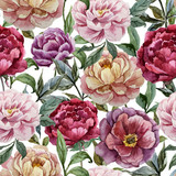 Beautiful vector watercolor pattern with peonies on white fon1