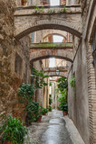 antique Italian alley