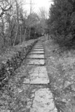 Old stone walkway in the park