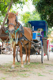 Horse carriage in Thai temple, Chiang mai