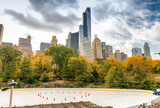 Ice Rink in Central Park with skyscrapers and foliage - NYC