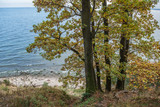 Autumn in GdyniaKepa Redlowska cliff-like coastline in Gdynia, P