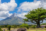 Amazing landscape with a view of  beautiful active Mayon volcano, tall tree and cloudy sky. Legazpi, Philippines.