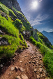 Mountains trail in Tatras at summer