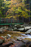 Bridge Across Stream in Autumn Forest