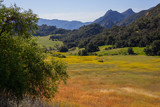 Beautiful panoramic view of the valley surrounded by mountains i