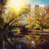 Central Park staw i most. Nowy Jork, USA.