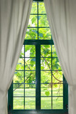 garden through the widow with curtains