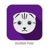 Scottish Fold, Cat breed face cartoon flat icon design