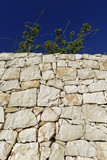Italy, Sicily, countryside, typical hand made sicilian stone wall
