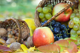 Organic fruit in basket in autumn grass