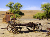 An old west buckboard wagon in a field.