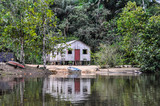 Lonely hut in the Amazon Rainforest, Manaos, Brazil