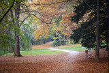 Autumn in Maksimir park, Zagreb, Croatia