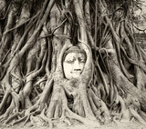 Buddha head in tree roots in Wat Mahathat, Ayutthaya, Thailand