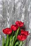Holiday Tulip Flowers on Wooden Background