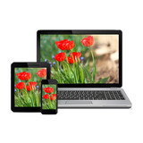 Laptop, tablet computer and smartphone with flowers on screen