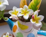 lovely charming aroma flower plumeria in mini boutique style with colourful decoration