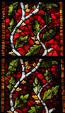 Stained Glass in Leon - branch with leafs