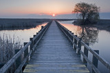 Sunset at the marsh boardwalk at Point Pelee, Canada