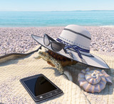 relaxing vacation concept background with seashell, turtle and beach accessories