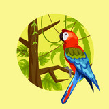 parrot in the jungle. vector illustration