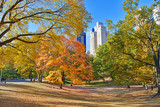 Autumn Colors - fall foliage in Central Park, Manhattan,New York