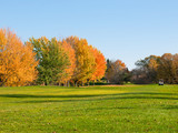 Golf in fall with cart on the fairway
