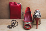 Retro photo of red snake leather shoes and accessories