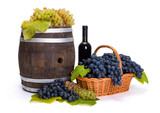 White and blue grape in basket with barrel