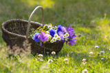 wildflowers in a basket