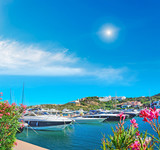 luxury yachts in Porto Cervo